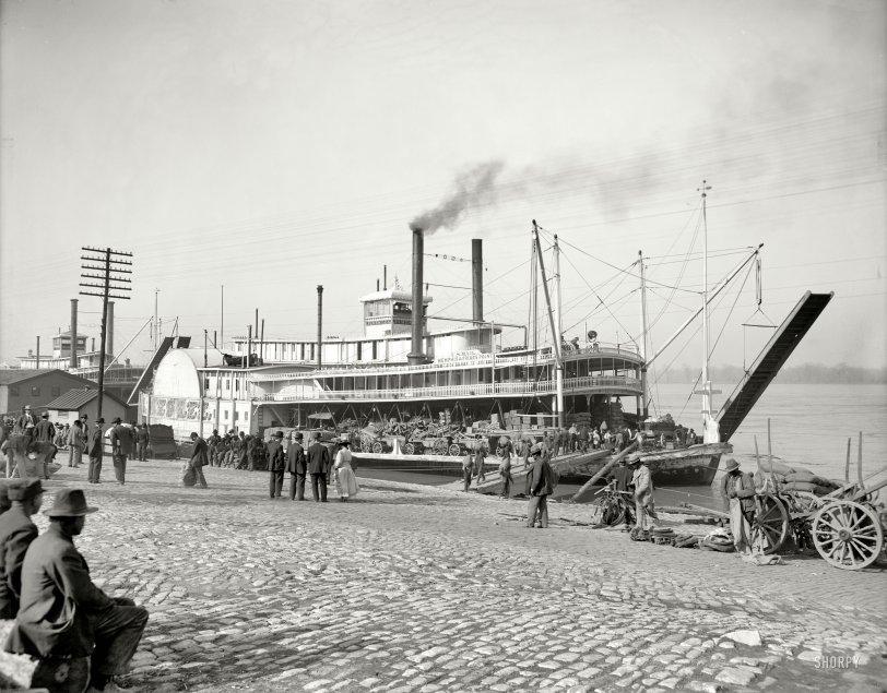 Old Man River: 1900