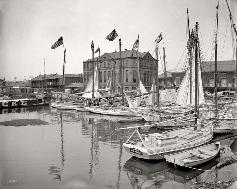 Oyster Luggers: 1908