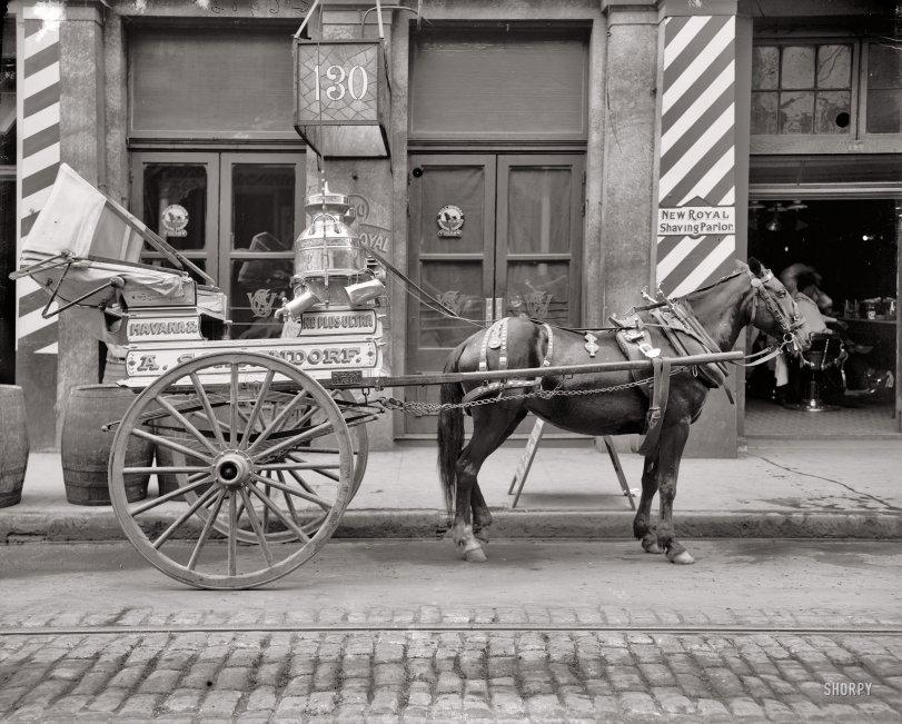 Milk Mare: 1910