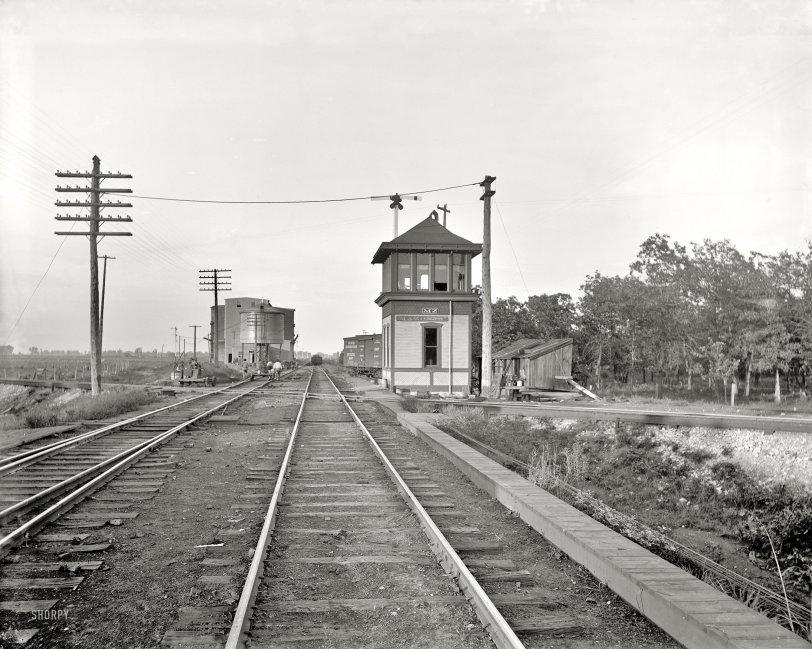 Mazonia: 1900