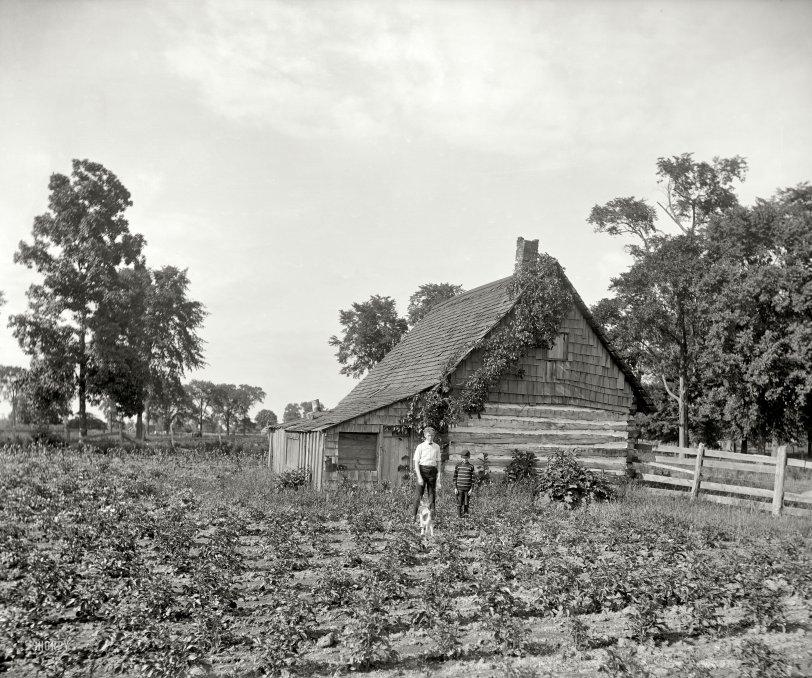 Summertime: 1900