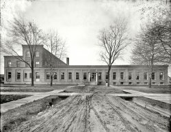 Detroit Publishing: 1910