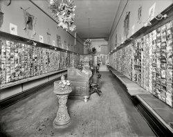 Postcards Aplenty: 1910