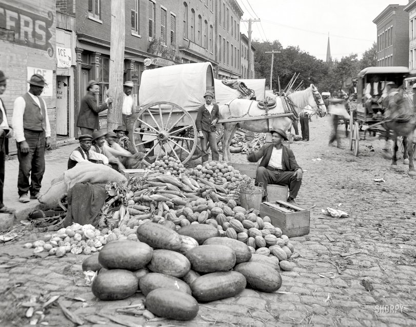 Vegetable Men: 1908