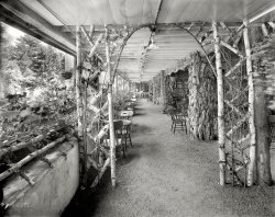 The Grotto: 1908