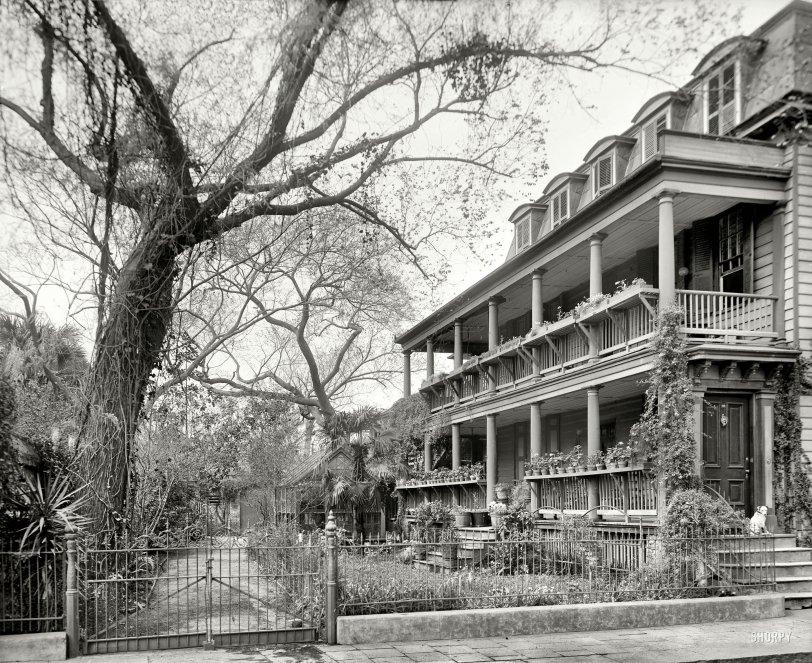 Maison Geranium: 1910