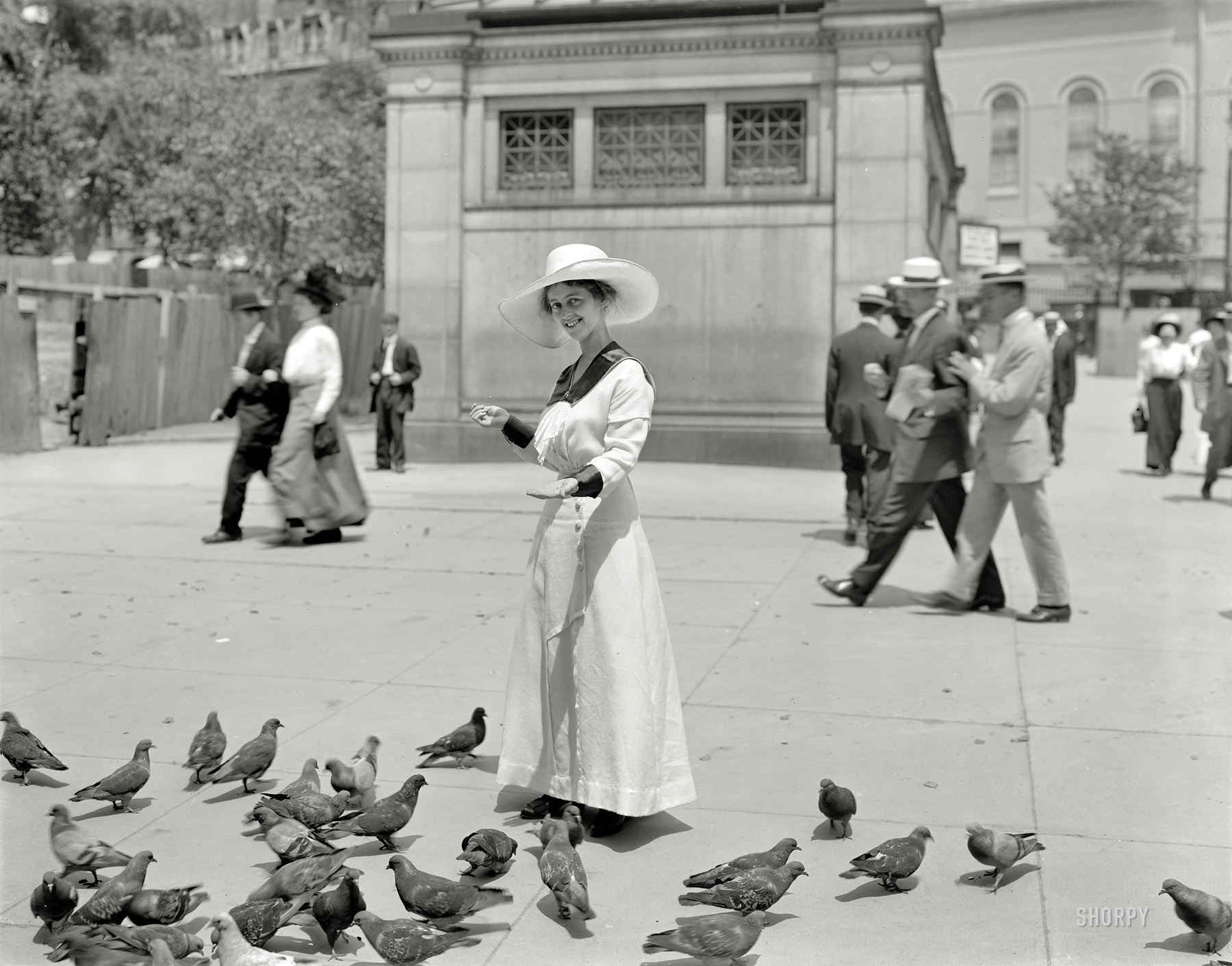 Shorpy Historic Picture Archive :: The Bird Feeder: 1915 high-resolution  photo