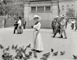 The Bird Feeder: 1915