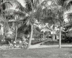 West Palm: 1910