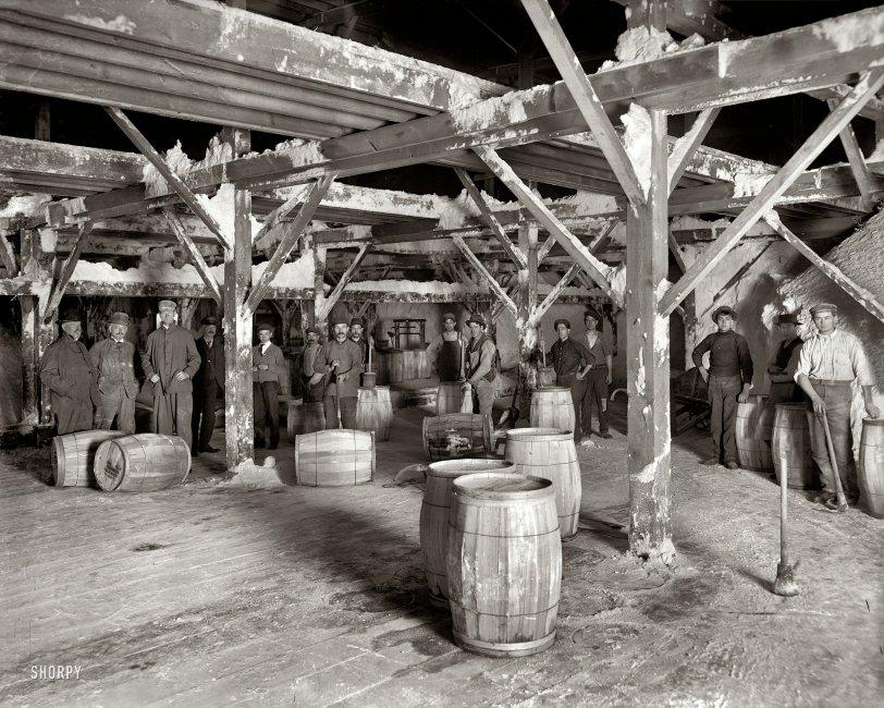 Old Salts: 1910