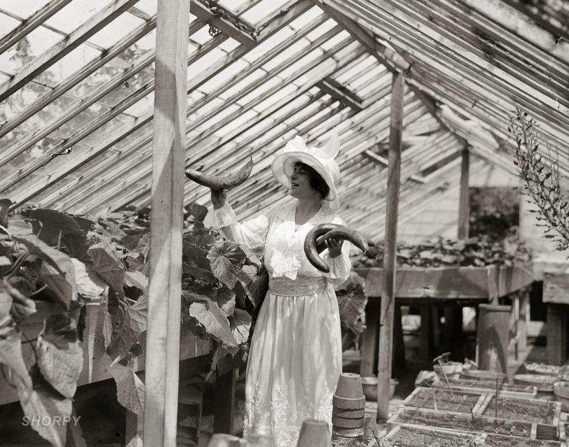 Madama Butterbean: 1910