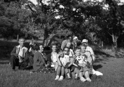 Picnic Expressions: 1953