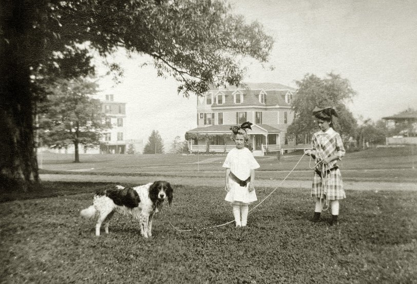 My Ancestors: 1913