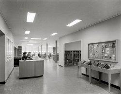 Library Ladies: 1953