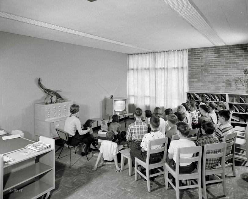 Rabbiteers: 1954