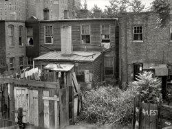 Rear Window: 1935