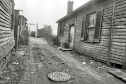 Gasoline Alley: 1935