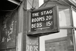 The Stag: 1938