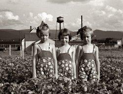The Three Graces: 1939