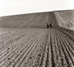 Jasper County: 1940