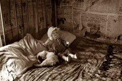 Cat Nap: 1936