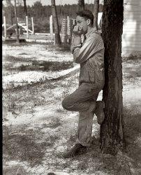 Harmonica Boy: 1937