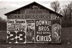 Wild Animal Circus: 1936