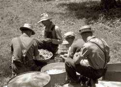 Picnic: 1940