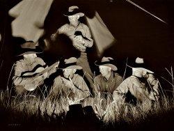 Montana Cowboys: 1939