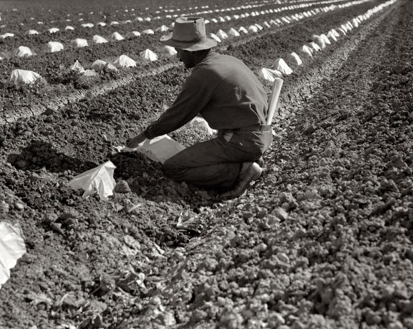 Imperial Valley: 1937