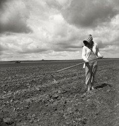 The Good Earth: 1937