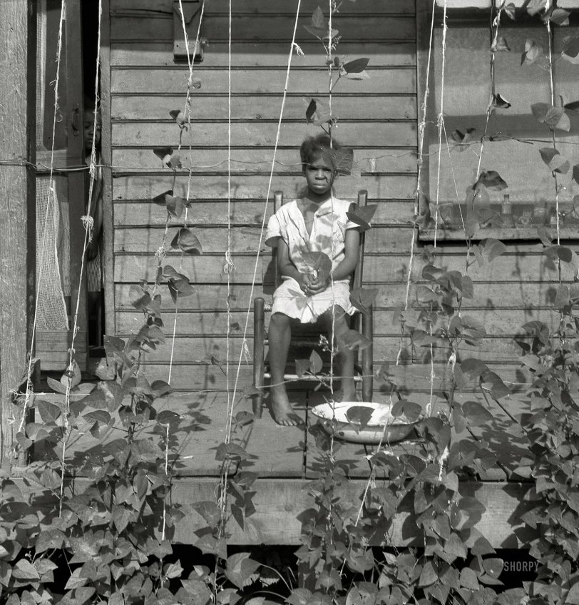 House of Vines: 1938