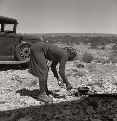 On the Road: 1938