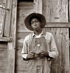 Tenant Farmer: 1939