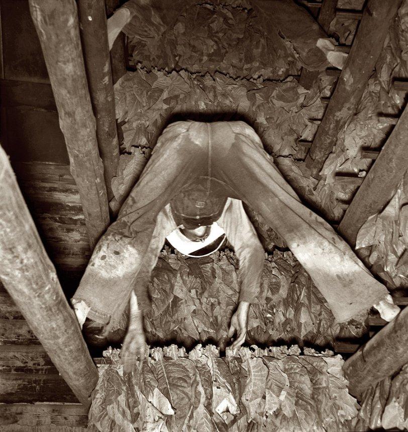 Shoofly Hangers: 1939
