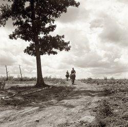 Gone Visiting: 1939