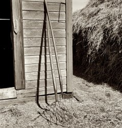 Two Forks: 1939