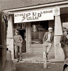 Spud Cellar: 1939