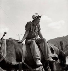 La Dolce Vita: 1938