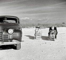 Snowbirds: 1941