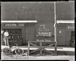 Shine: 1936