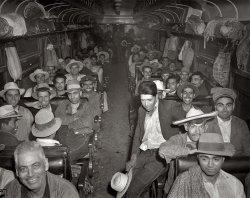 Beet Train: 1943