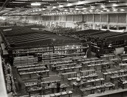 Willow Run: 1942