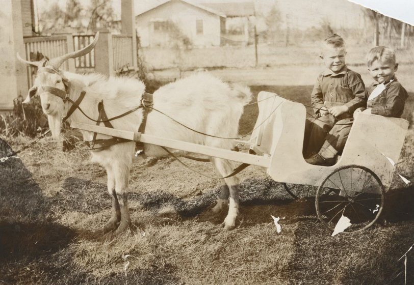 Boys in a Goat Wagon: 1927