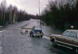 Maine Bog Flood