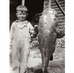 Little Boy, Big Fish