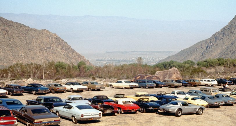Vettes Galore: 1969