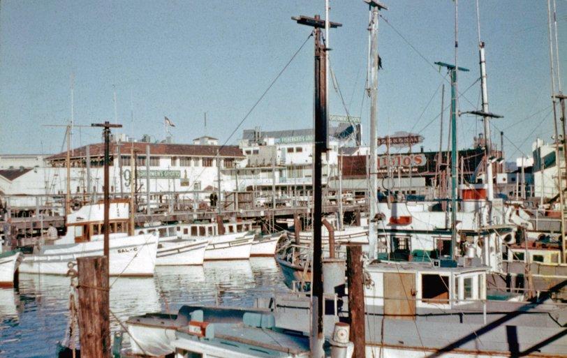 Fisherman's Wharf: 1958