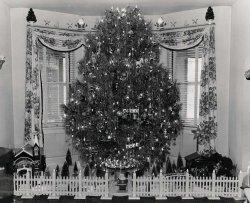 Grampa's Rotating Tree: c. 1950