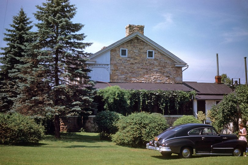 Mid-Century Honey Grove